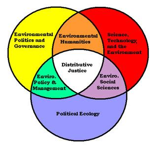 Research about understanding culture society and politics